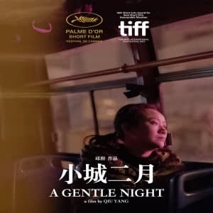 Top 10 International Short Films A Gentle Night
