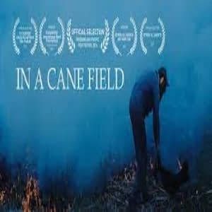 Top 10 International Short Films In A Cane Field